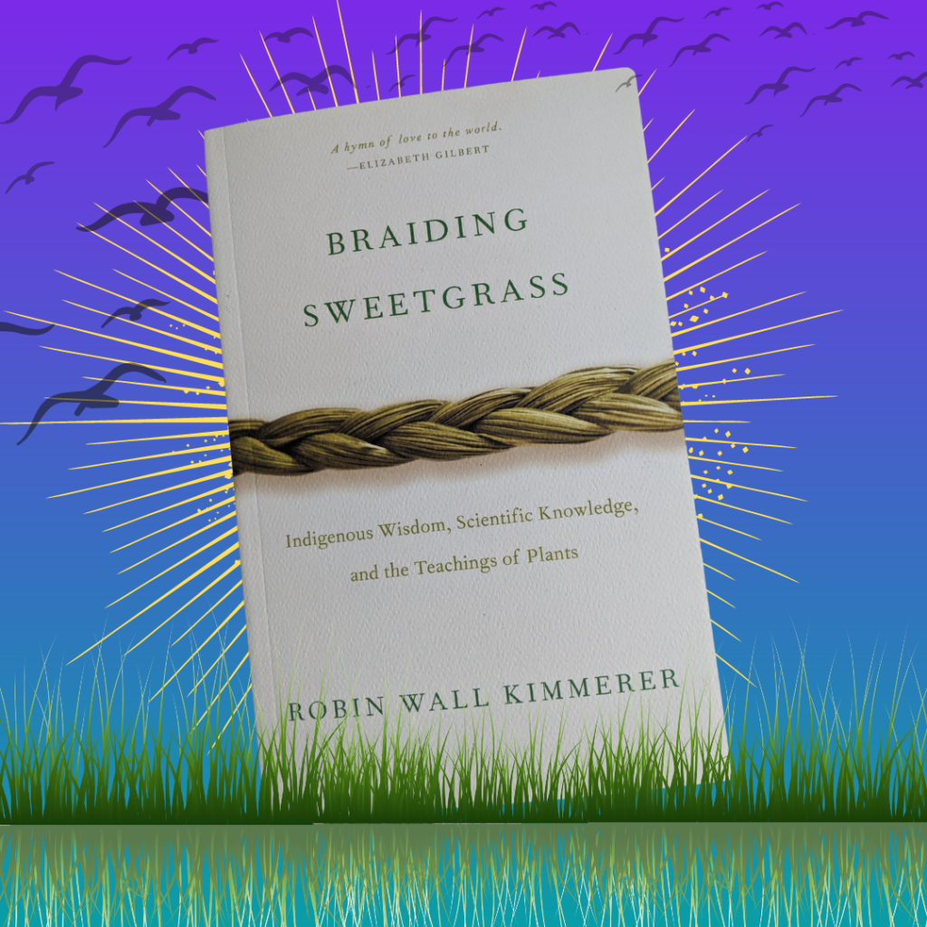 Braiding Sweetgrass book with grass in front, sun behind the book, and birds flying through the sky above