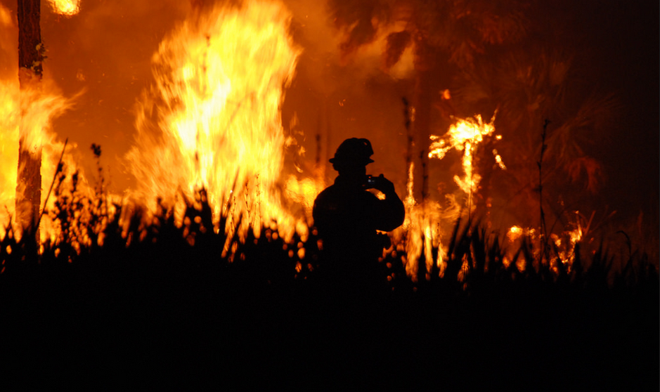 wildfire smoke odor