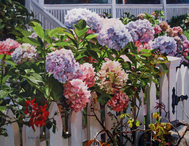 Fence with Sunlit Hydrangea by Heather Peacock
