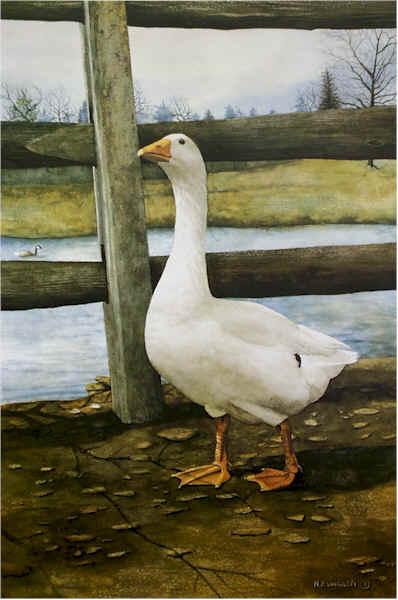 Portrait of a Goose by Nick Santoleri