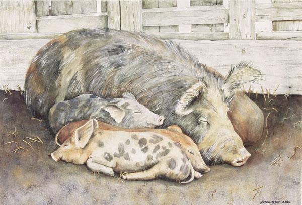 Priscilla and Piglets by Nick Santoleri