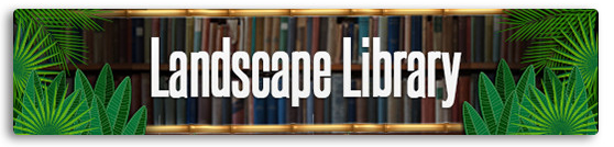 LibraryBig
