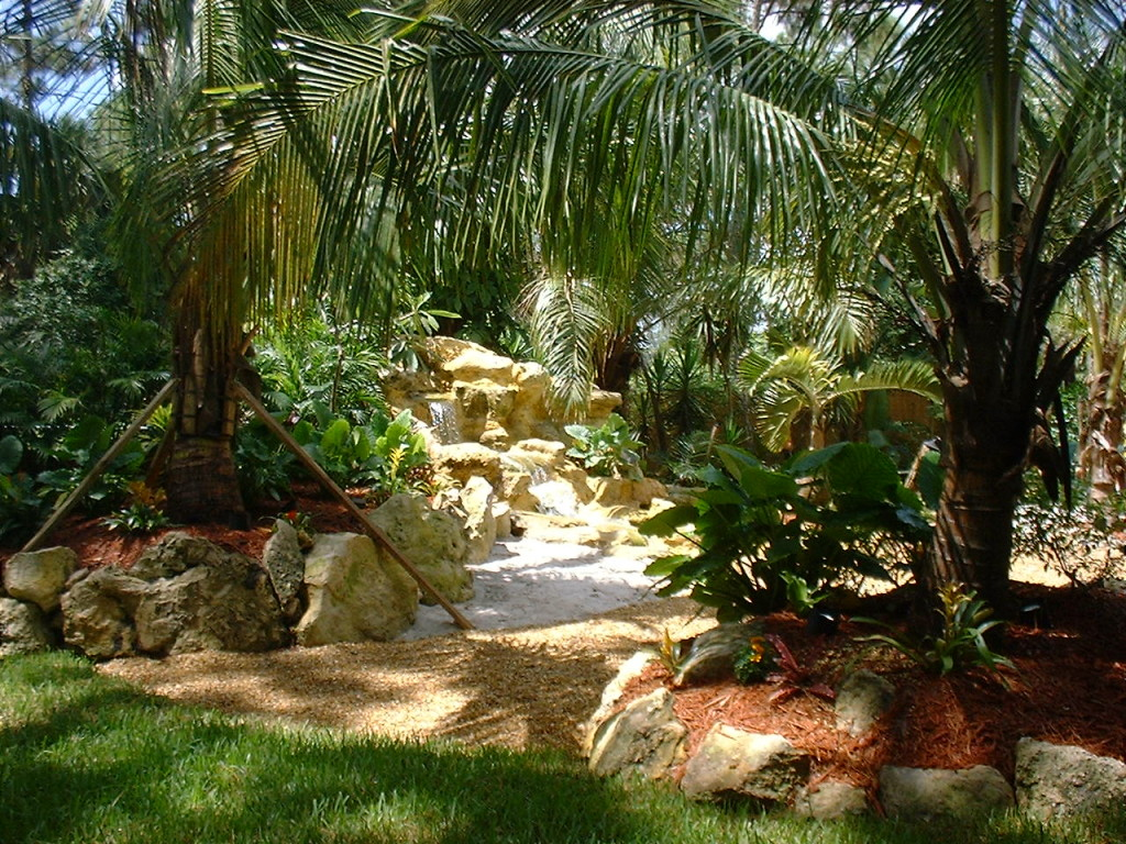 Backyard Makeover, swimming pool & landscape