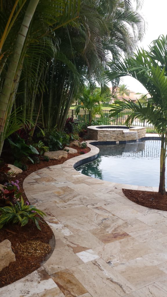 The large plantings to the left side of the pool area are Areca palms in this photo.  The property did not allow for much space and these mature Arecas provide not only a privacy screening in this small area, but also shade and a tropical look.  Underplantings of California Alacacia, Bromeliads, Ginger and Croton Varieties help to provide year round color in a shaded bed area.  Cap rock boulders were placed as an accent to enhance the contrast points and view.