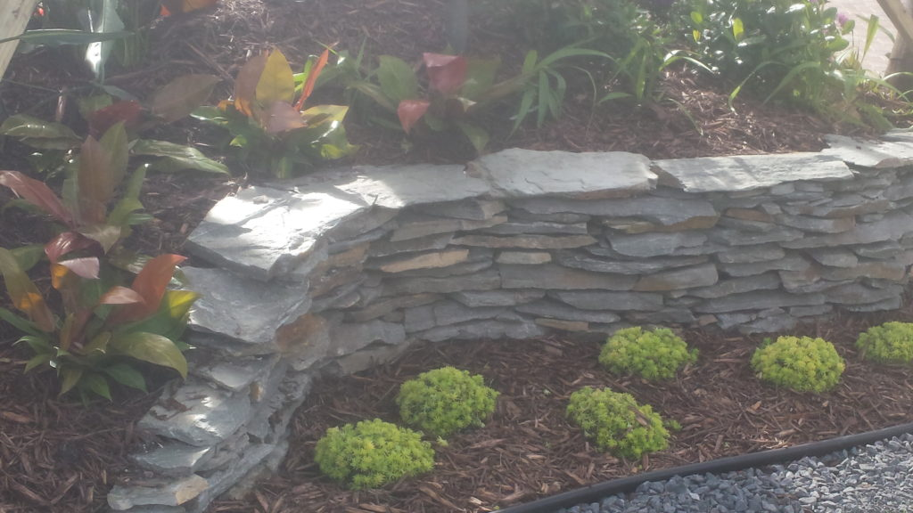 This photo shows the soil elevation of this new landscape bed, with the newly installed Grey slate decorative stacked flagstone wall as a stand out accent in the design.  The flagstone acts as both retention for the soil as well as a main factor of the look.  Black, grey slate stone accents part of the landscape bed to repeat the color and the tropical bold colors in the landscape helps the scene to pop a bit more.  Hope you like !  Universal Landscape, Inc.
