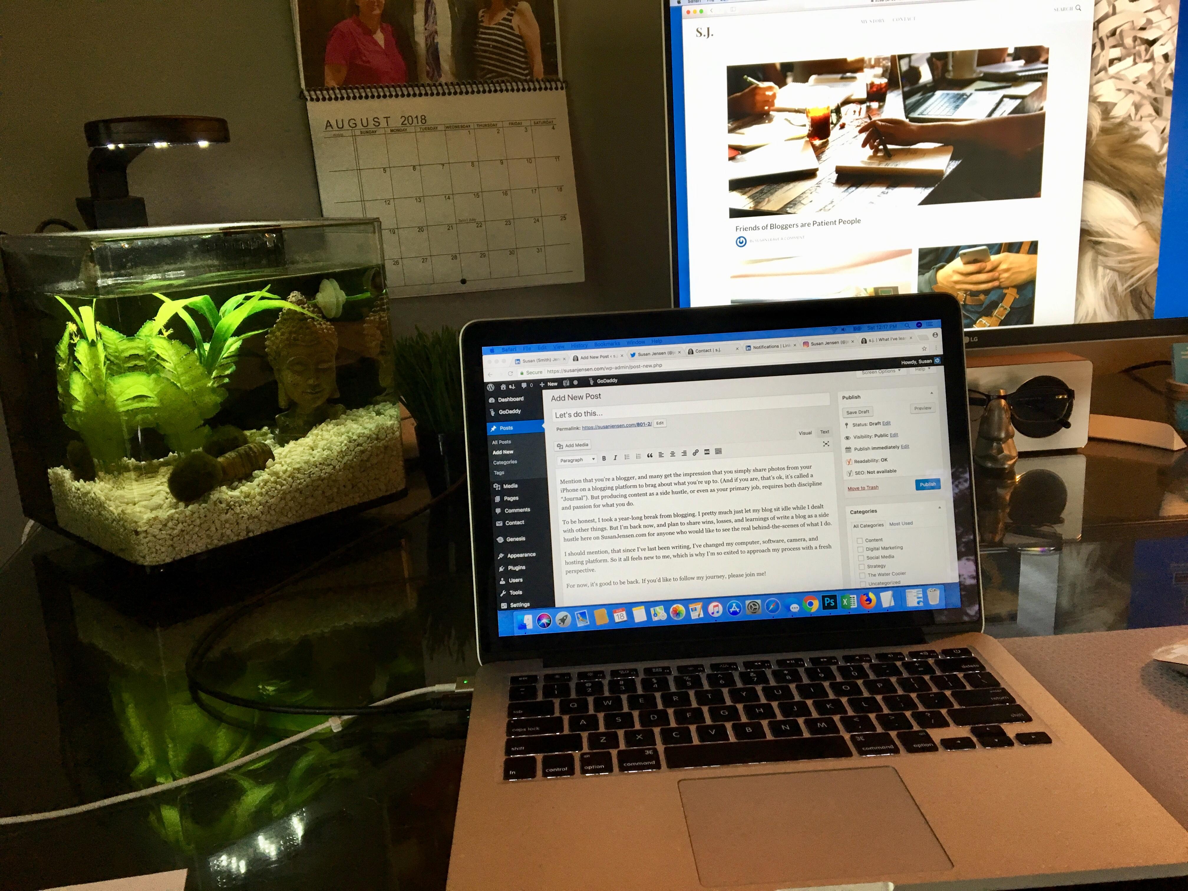 back to blogging