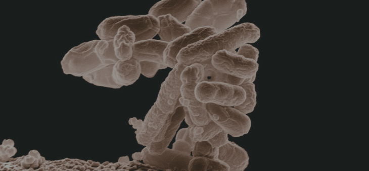 Misleading chronic infection screening in autoimmune disease
