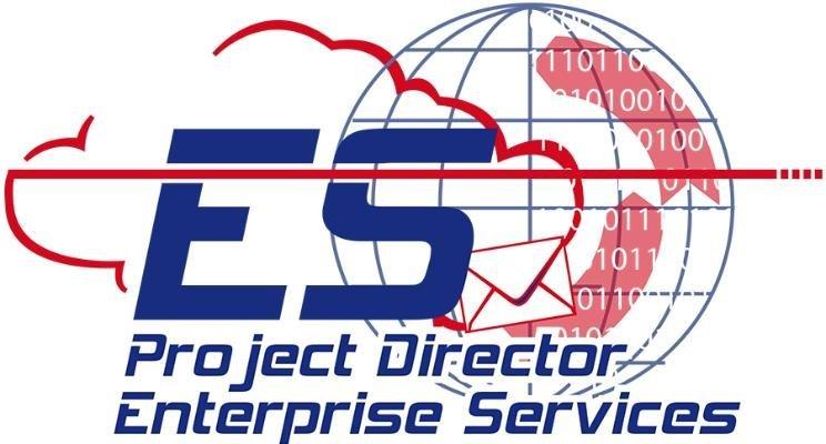 Project Director, Enterprise Services