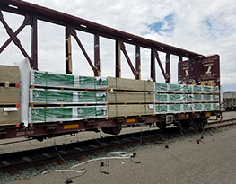 Advanced Logistics and Distribution Systems - Railcar Transloading