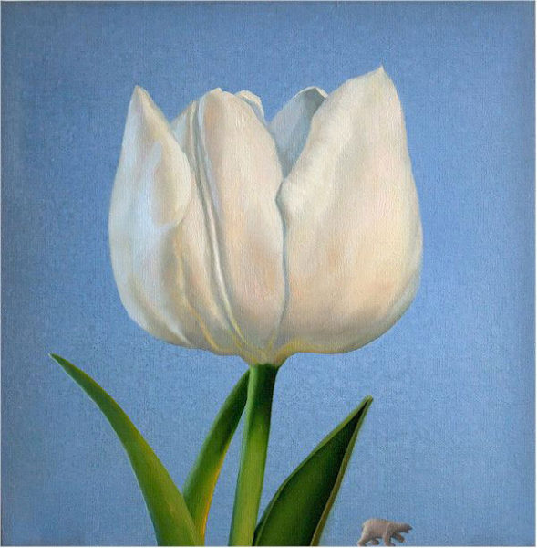 Oil painting on canvas by Canadian artist Joanna Strong of a white tulip, entitled: A Moment of Peace.