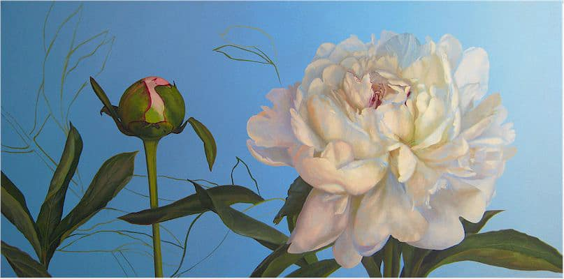 Oil painting on canvas by Canadian artist Joanna Strong, entitled: Peony Bud and Blossom.