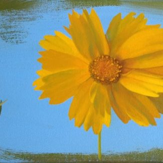 Oil painting on canvas by Canadian artist Joanna Strong, entitled: Sunny Day.