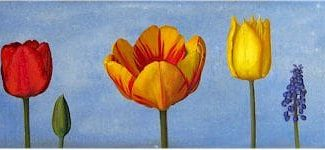 Oil painting on canvas by Canadian artist Joanna Strong, entitled: Ten Tulips and a Hyacinth.