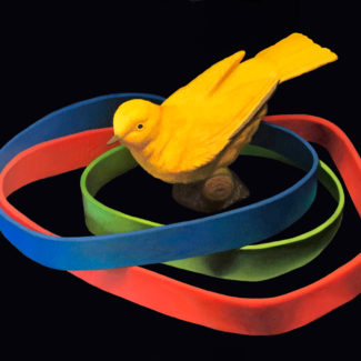 "Oil painting by Canadian artist Joanna Strong entitled""Venn Diagram of the Existence of a Yellow Bird."""