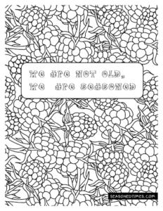 Raspberry_ColoringPage_seasonedtimes.com