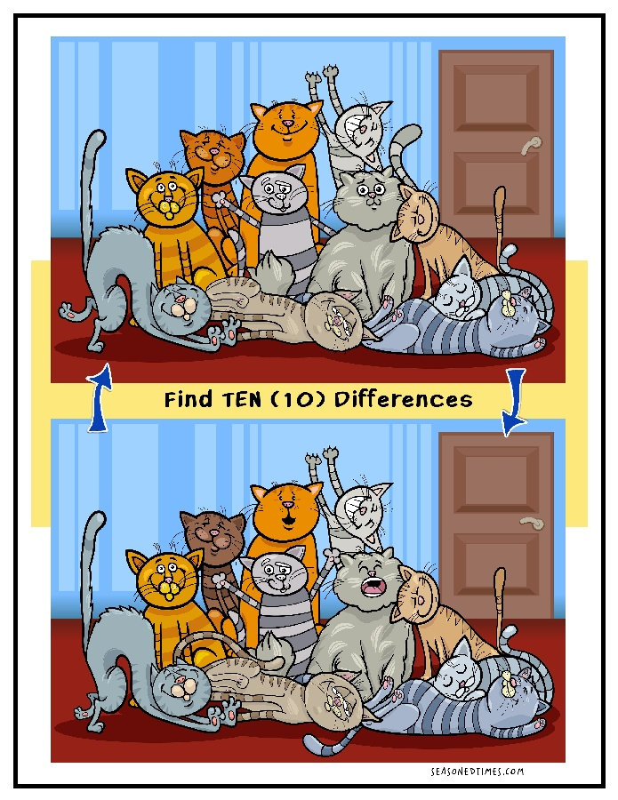 FDCats1120