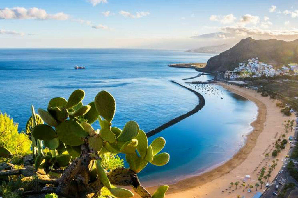 Trips to The Canary Islands