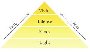 yellow_img_e