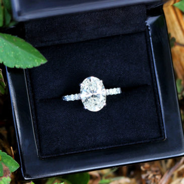 Oval Diamond Solitaire Engagement Ring with Accents 18K White Gold 3.38ctw