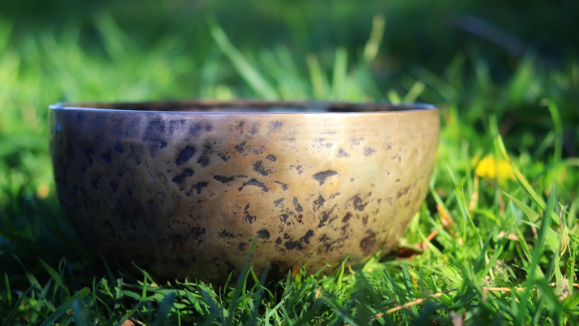 Singing Bowl in the Garden