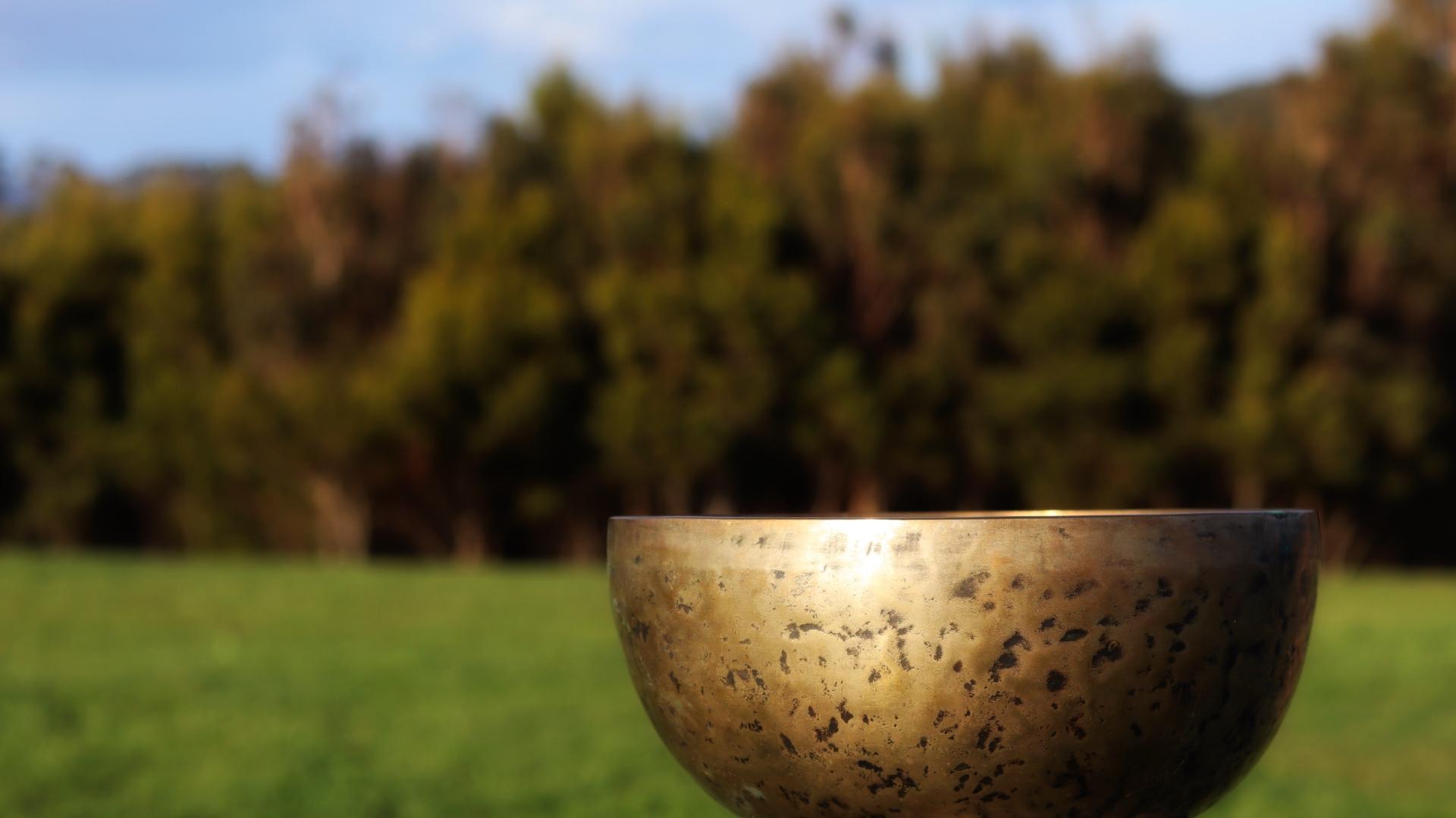 Tibetan Singing Bowl in the Garden