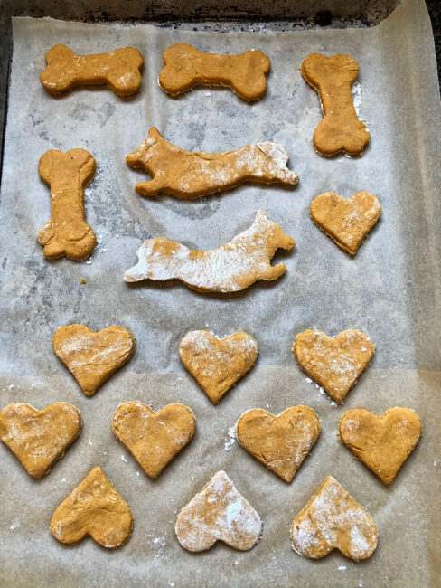 Peanut Butter & Pumpkin Dog Biscuit Shapes