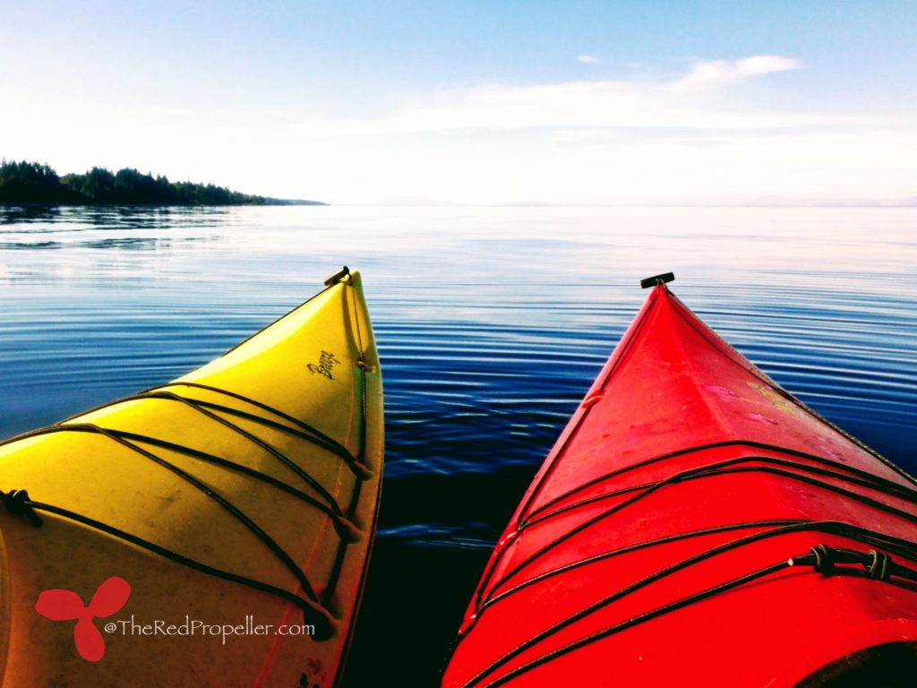 A calm summer paddle