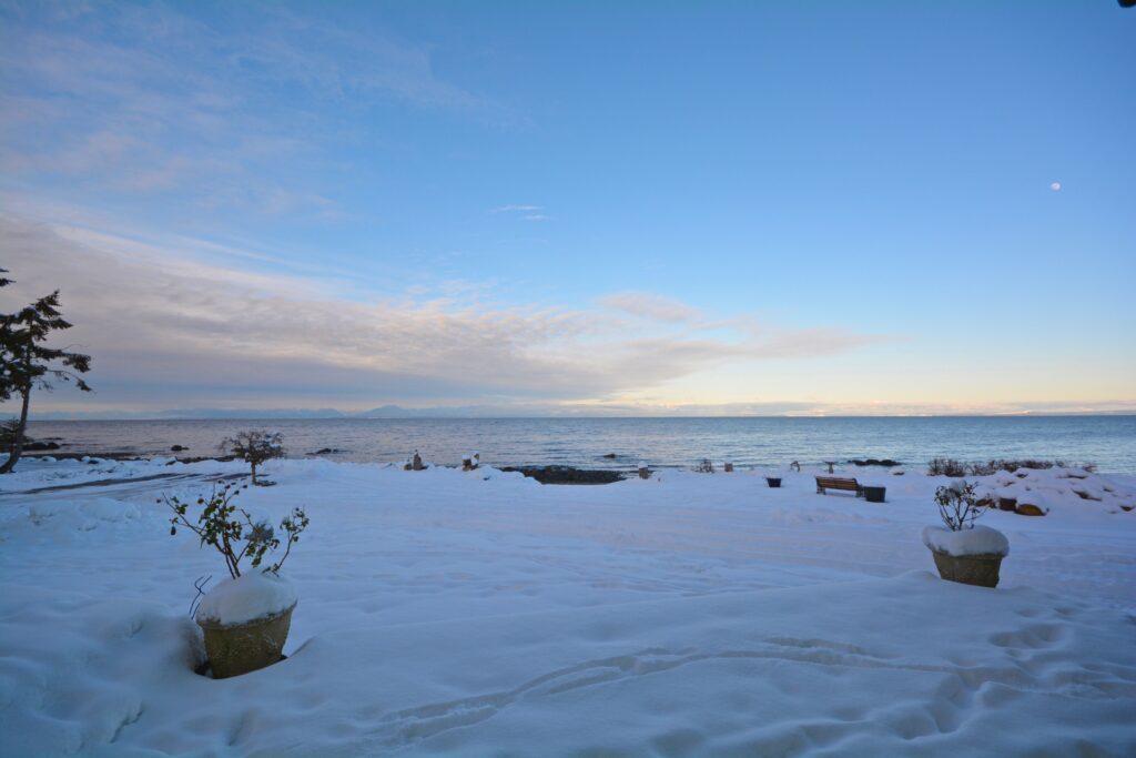 Snowy wintery day