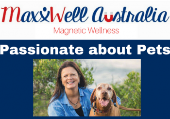 Passionate about Pets