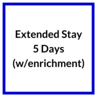Extended Stay 5 Days with enrichment