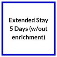 Extended Stay 5 Days without enrichment