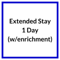 Extended Stay with enrichment