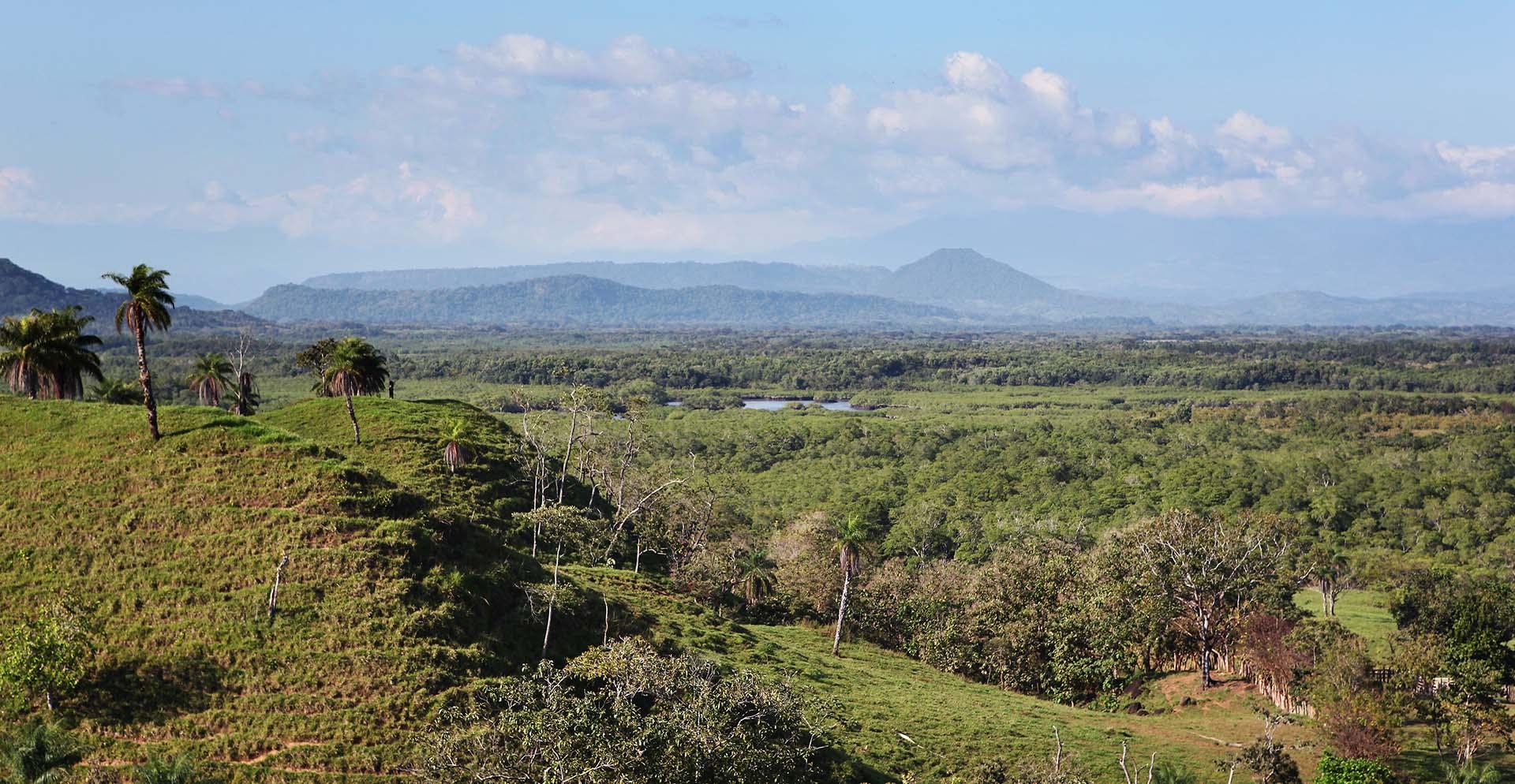 jungle hiking in Panama