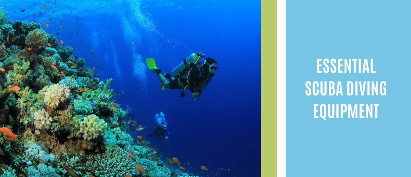 Essential Scuba Diving Equipment
