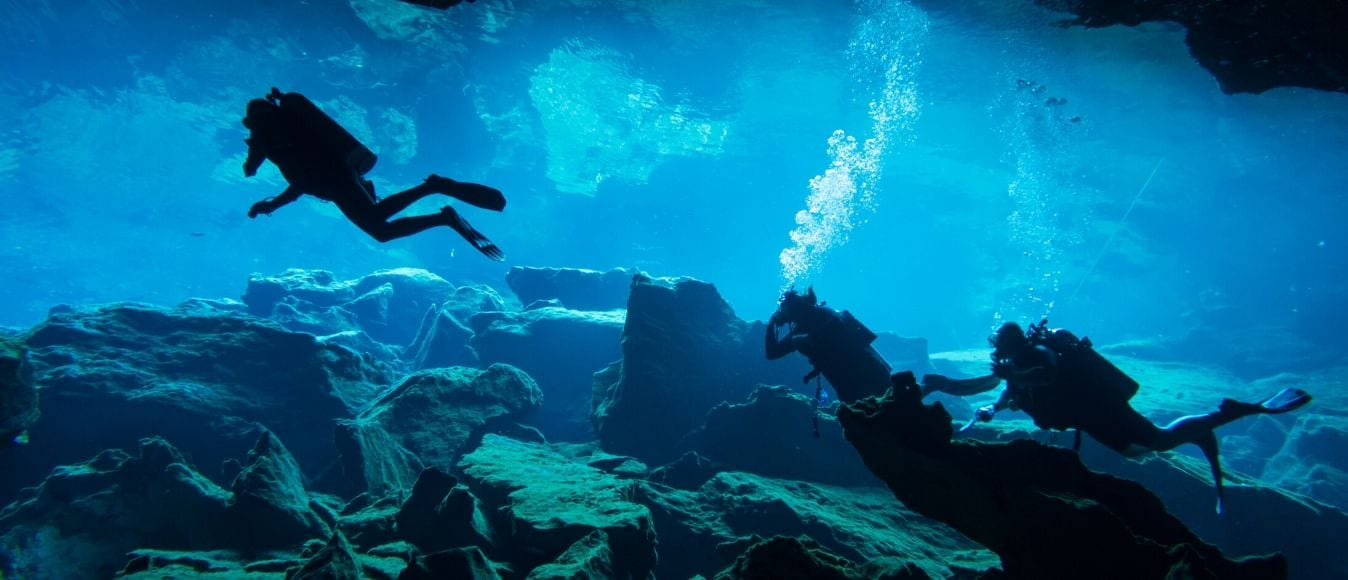 The Different Types of Scuba Diving