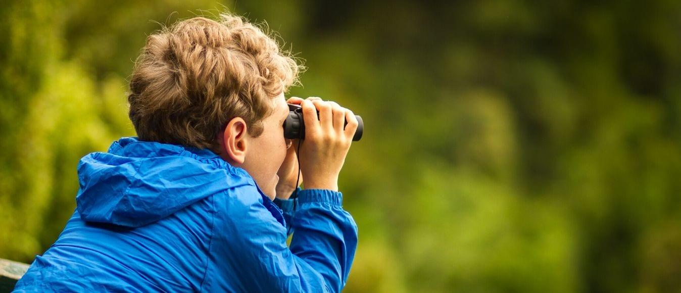 A Basic Bird-Watching Equipment Checklist
