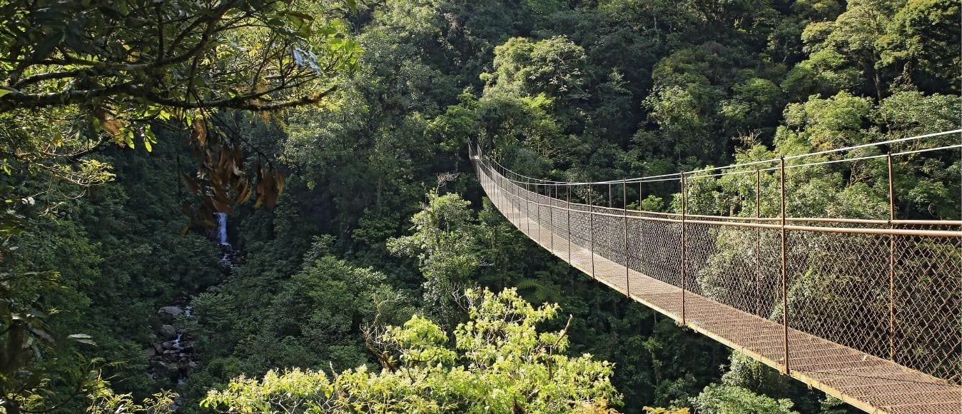 Advanced Hiking Trails to Take in Boquete, Panama