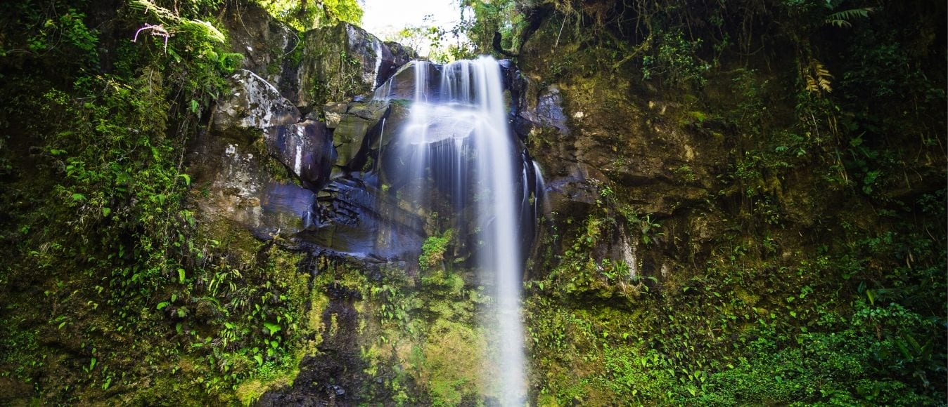 Top Panama Waterfalls You Have to Visit