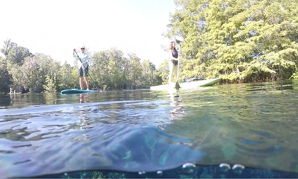 Stand Up Paddle Boards at Ichetucknee Springs State Park