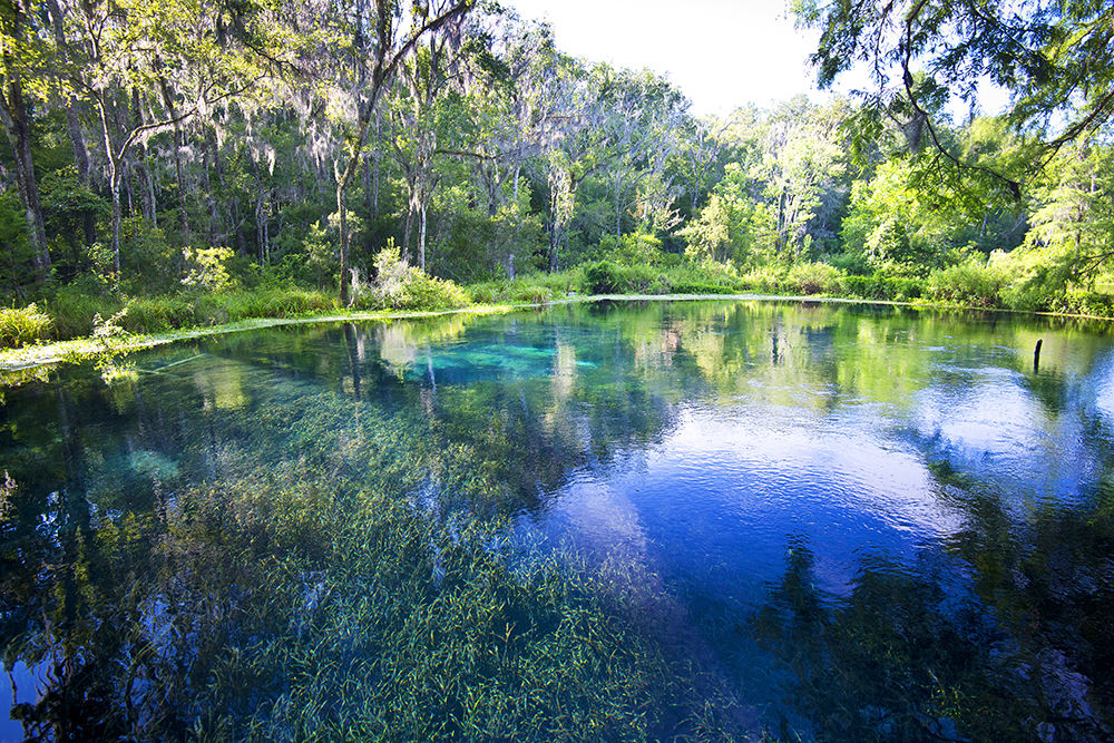 Blue Spring at Ichetucknee Springs State Park