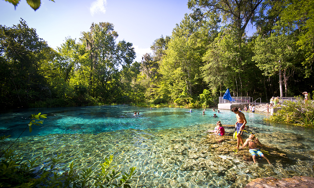 Swimming Head Springs at Ichetucknee Springs State Park