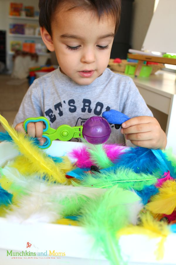 """Activity to go along with the book """"Feathers for Lunch"""""""