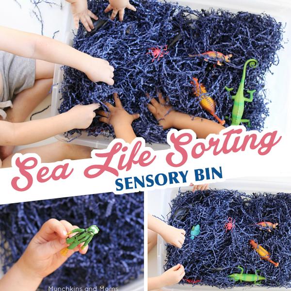 Sea life sorting sensory bin