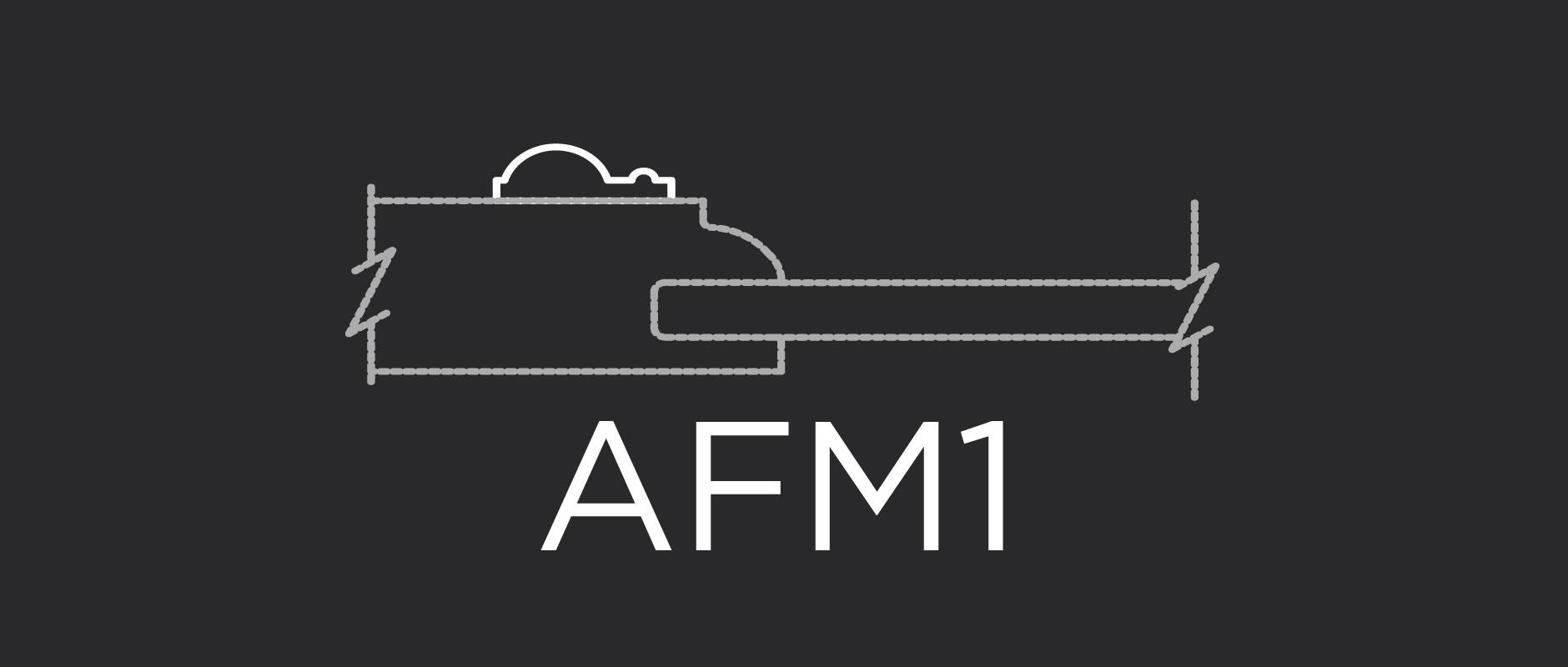 AFM1 face applied molding