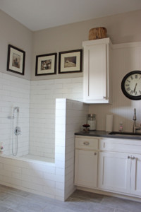 Laundry room with built in dog shower