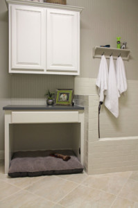 Dog shower and bed in the laundry room