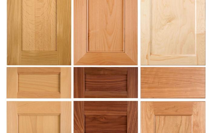 Transitional Shaker Cabinet Door Alternatives