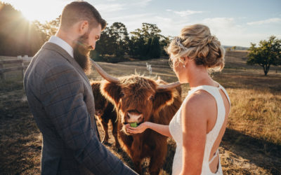 A top idyllic wedding venue hidden the heart of the Blue Mountains