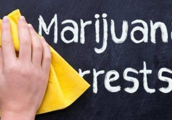 "Marijuana 4 Dummies: The Minority Cannabis Business Association Has A ""Model Bill"" for Diversity (8-28-17)"
