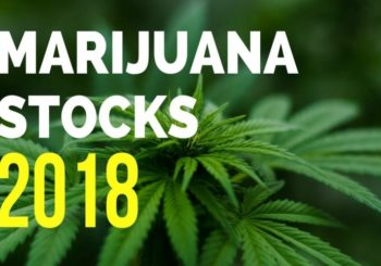 Marijuana 4 Dummies: Things To Consider When Choosing To Invest In Marijuana Stocks (11-5-18)